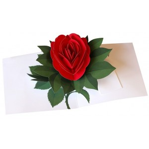 Image of   Pop-up Card Rose Red